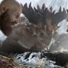 《God of War》將於4月20日發售中文劇情宣傳片公開