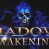 RPG新作《Shadows: Awakening》演示畫風與《Diablo》極其相似