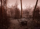 開放世界恐怖新作《Abandoned》環境超真實